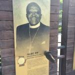 Shake hands with Desmond Tutu